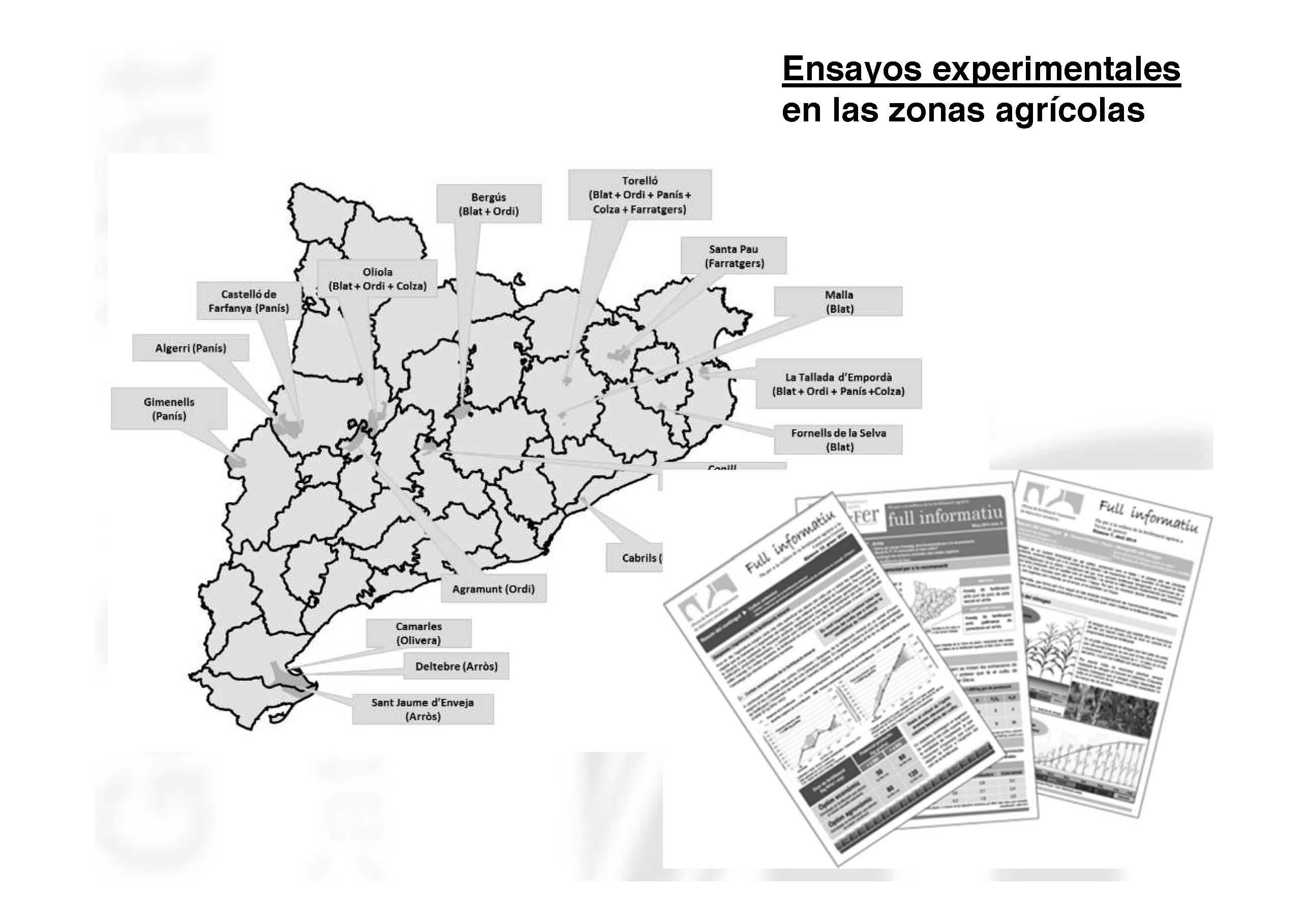 ponencia-carlos-ortiz-pag-21