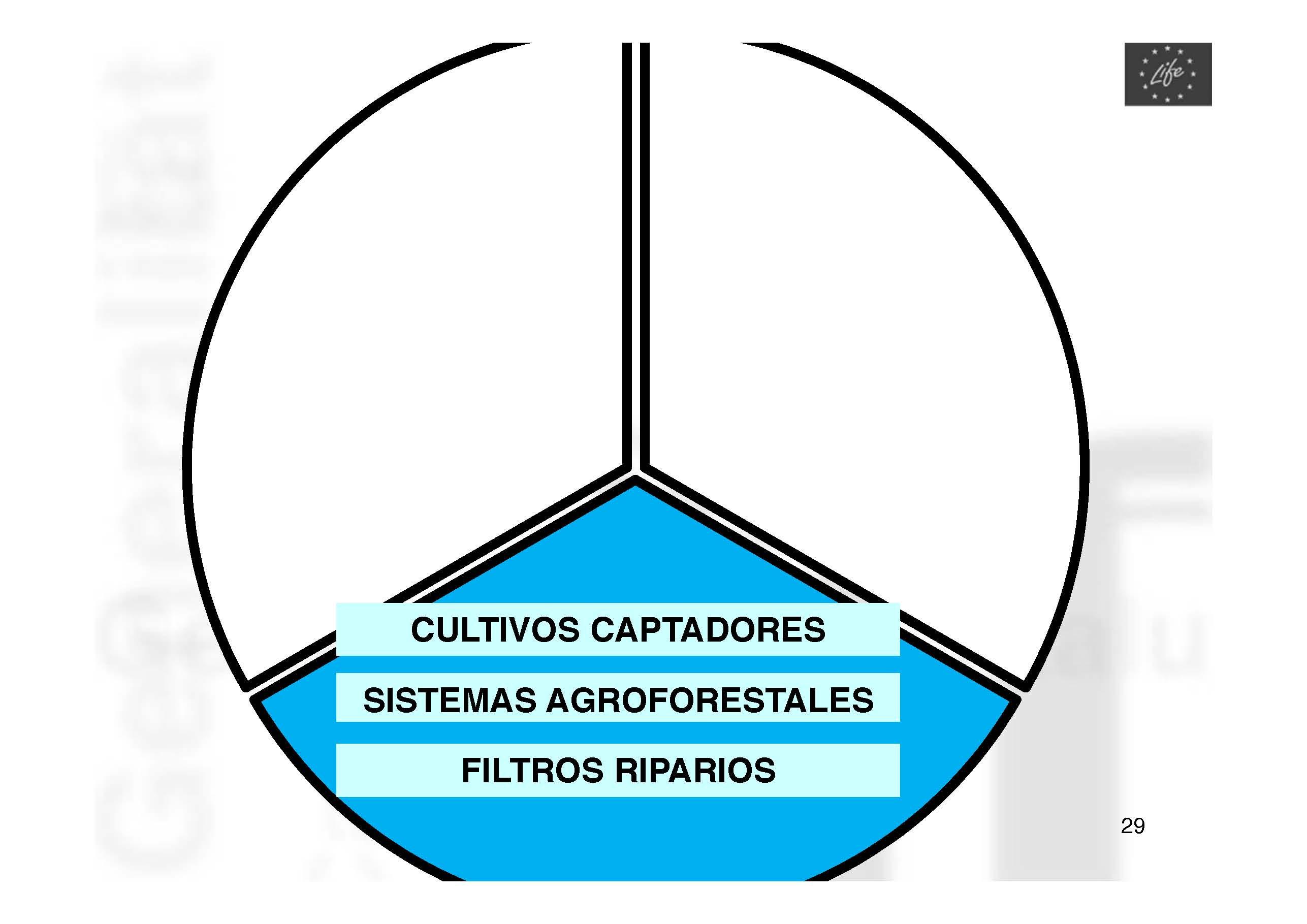 ponencia-carlos-ortiz-pag-29