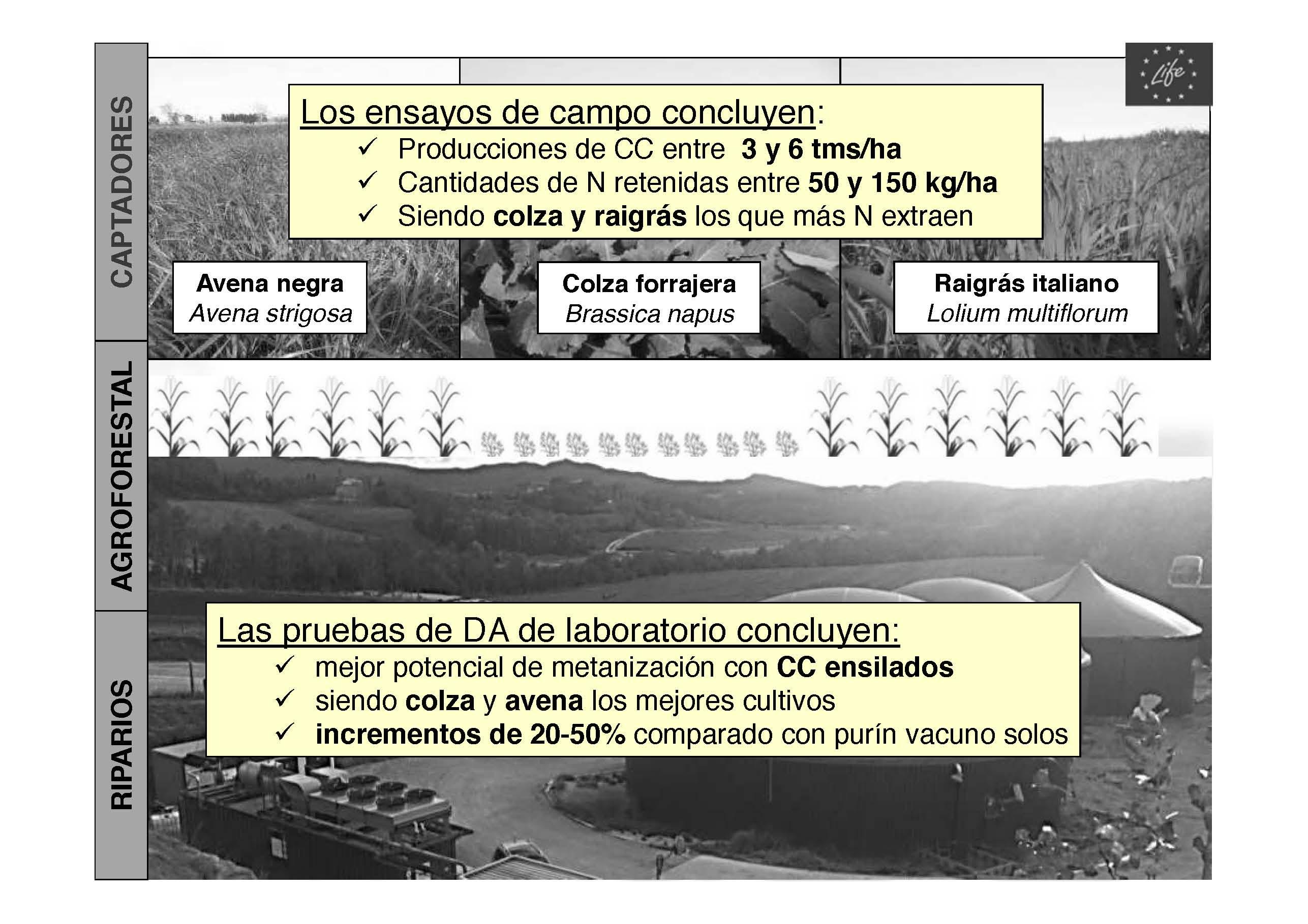 ponencia-carlos-ortiz-pag-30