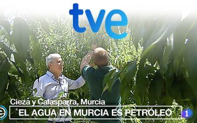 España Directo | Uso eficiente del agua para la agricultura en la Región de Murcia