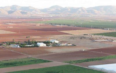 La primera Cátedra de Agricultura Sostenible de España, junto al Mar Menor