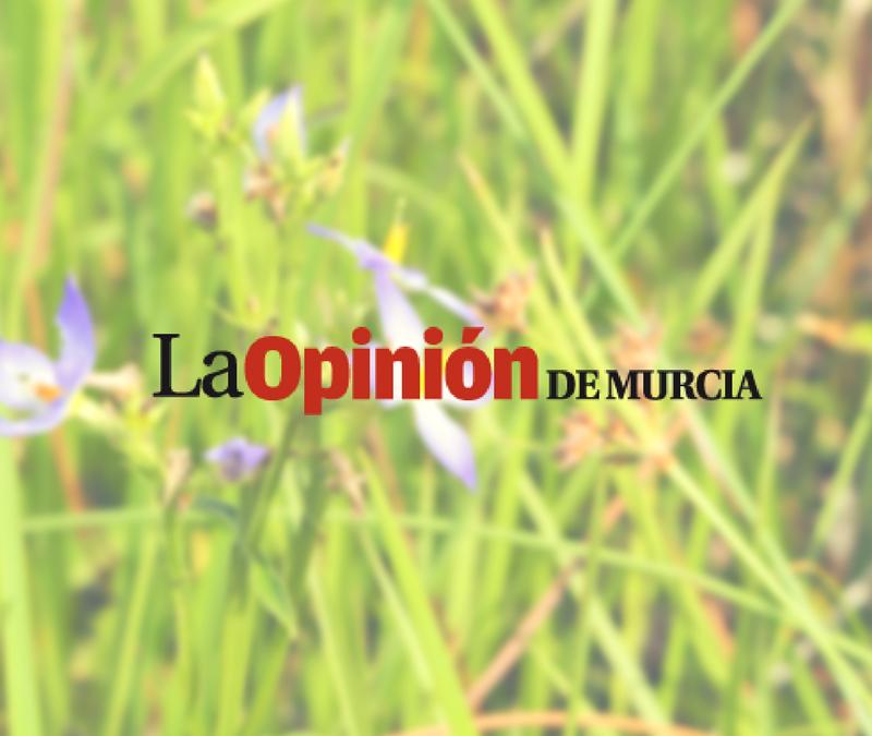 Agricultura Sostenible a través de producción integrada y ecológica