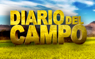 diario-del-campo