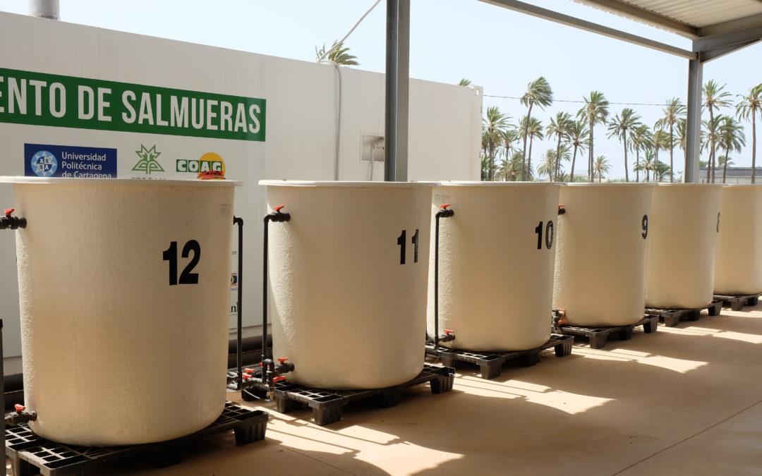«Desnitrificación, desalación y evaporación: soluciones sostenibles para el Campo de Cartagena»